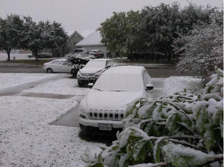 Nieve en Piedras Nieves, Coahuila. Foto: Nieve en Coahuila/Twitter @FerCanalesF
