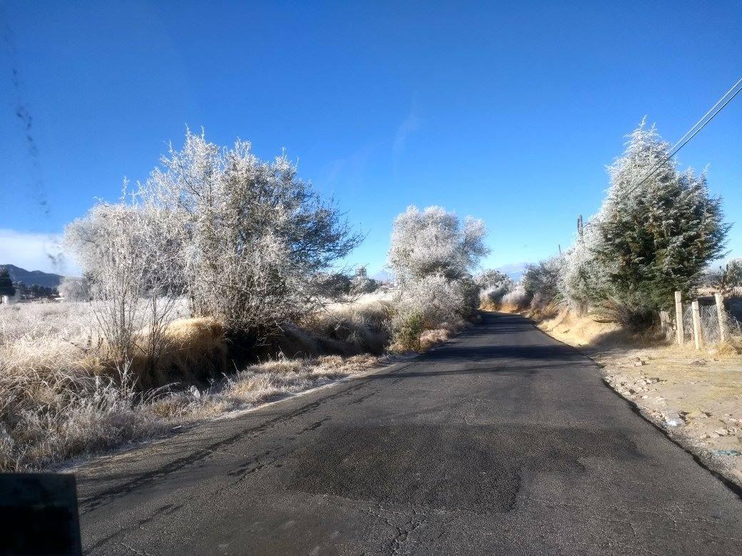 Las bajas temperaturas dejan estas bellas postales en Tlaxcala, hielo, nevada,