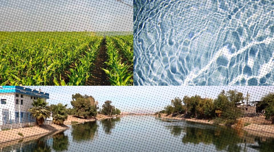 Ningún otro acuífero en México tiene niveles de sobreexplotación semejantes a los que registran Los Juncos y Zona Metropolitana