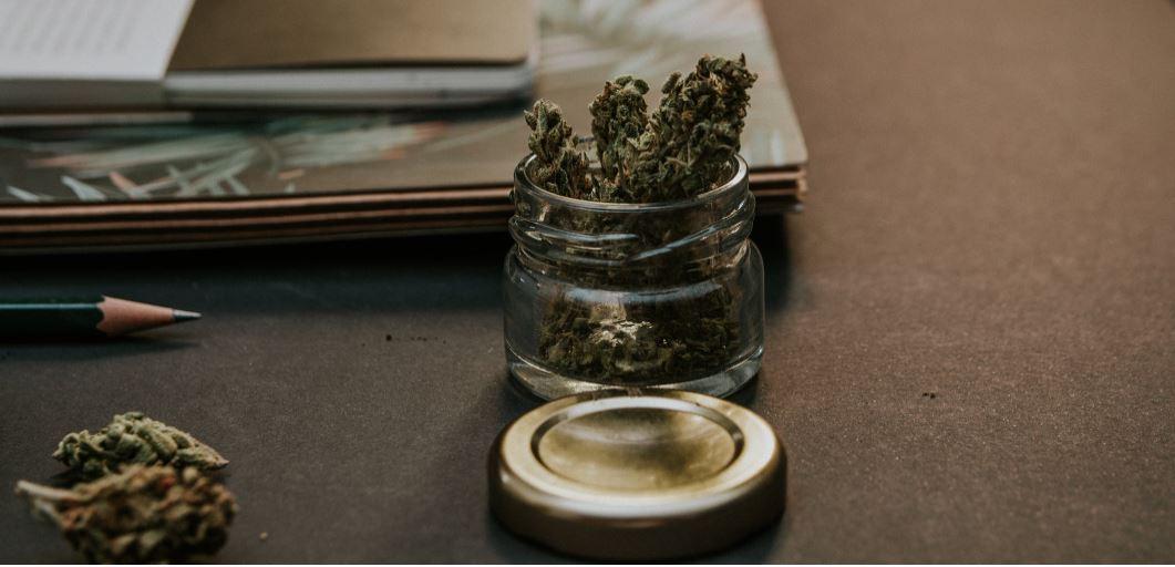 De aprobarse la ley, toda persona tendrá derecho a portar hasta 30 gramos de cannabis.