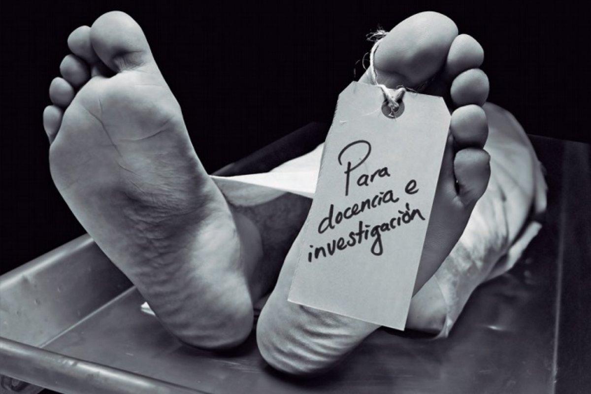 La práctica es fundamental para evitar la negligencia y los errores médicos. (Imagen tomada de La Gaceta UNAM)