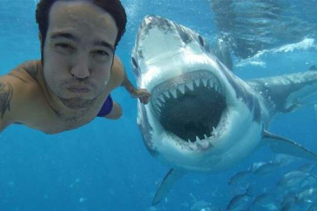 Tan sólo en 2015 murieron más personas por selfies que por tiburones, 12 contra ocho.
