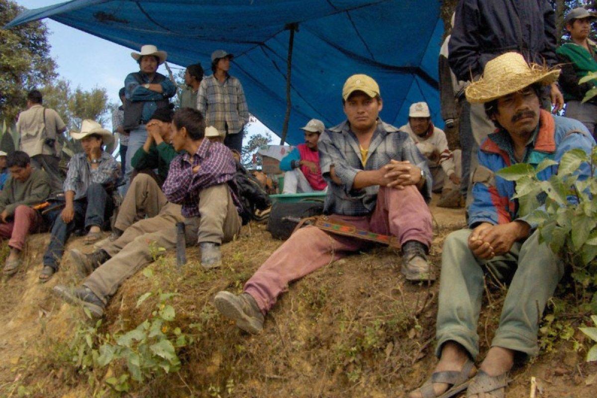 Una cuarta parte de los ejidatarios mexicanos tuvieron problemas con la inseguridad durante 2014.