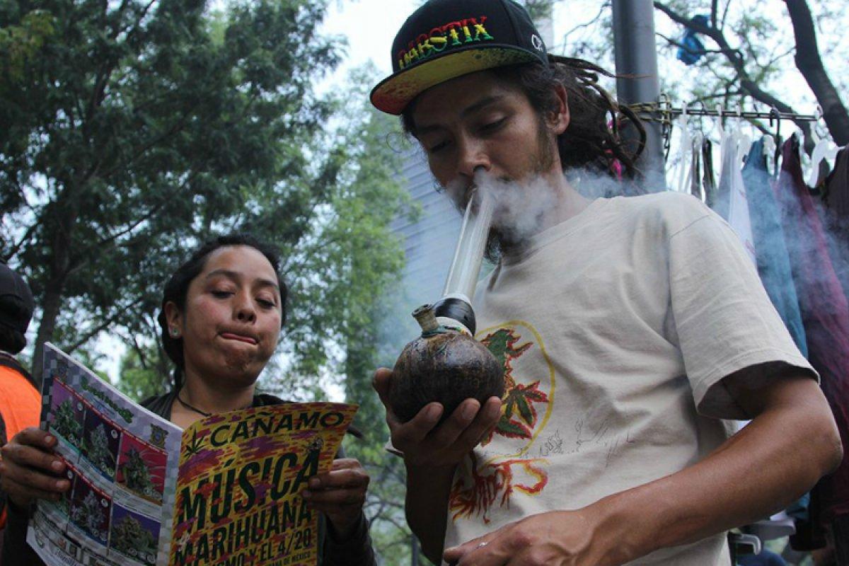 8.6 de los mexicanos han consumido mariguana, al menos una vez en su vida.